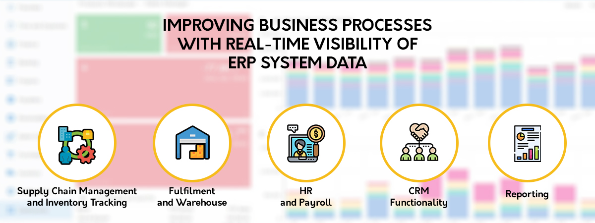 Real-Time Visibility of ERP System Data