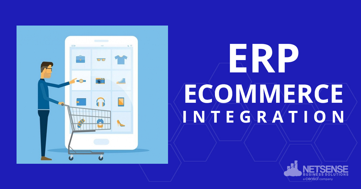 ERP Software for Ecommerce