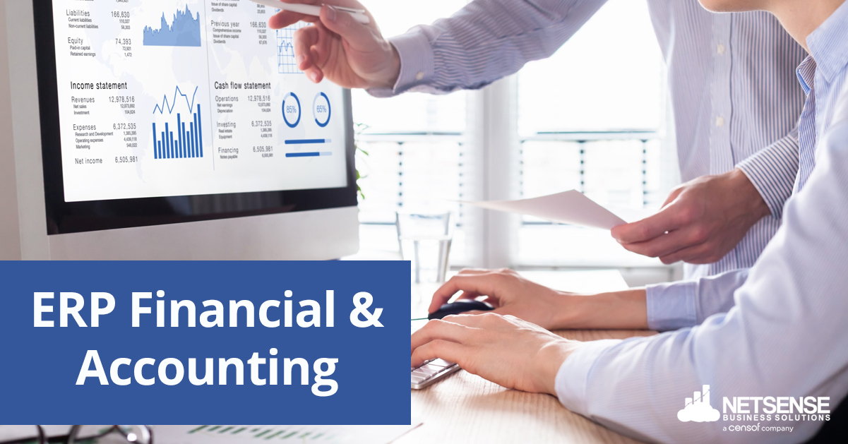 ERP Software for Accountants and Finance